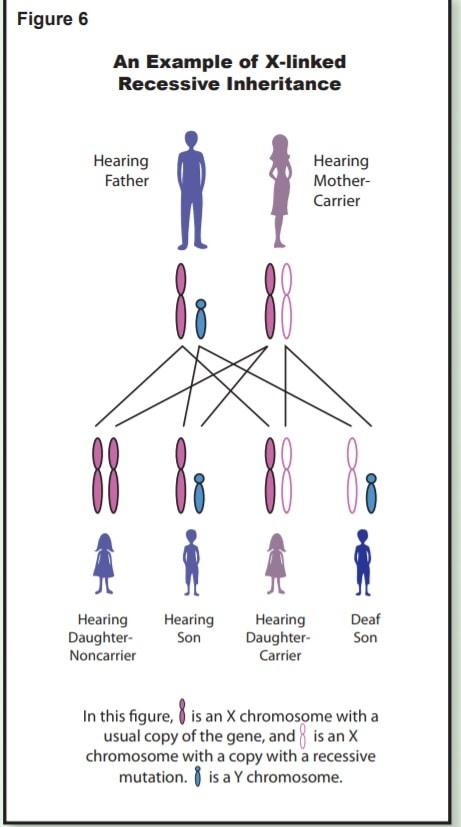 کم شنوایی در اتوموزال مغلوب